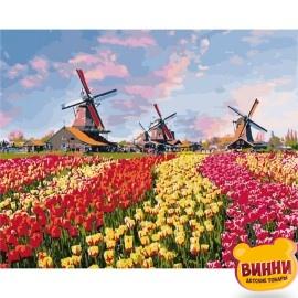 Картина по номерам Красочные тюльпаны Голландии, 40*50 см KHО2224