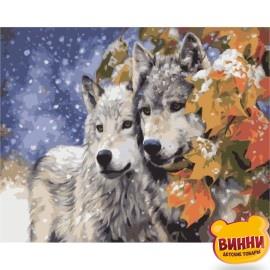 Картина по номерам Пара волков, 40*50 см KHО2434
