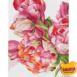 Картина по номерам Своенравные пионы худ. Диана Тучс, 40*50 см KHО2081
