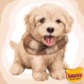 Картина по номерам Пушистый щенок, 40*40 см KHО4116