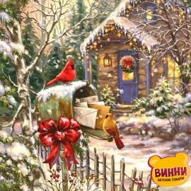 Картина по номерам Зимняя сказка, 40*50 см KHO2251