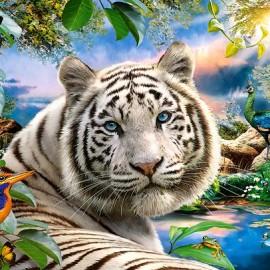 """Кастор пазлы 1500 """"Тигр""""68*47"""