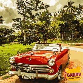 Картина по номерам 40*50 см AS0688 Стильное авто
