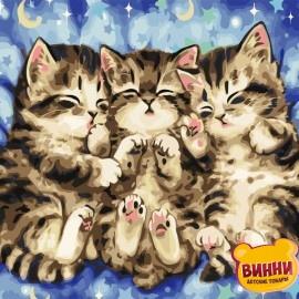 Купить картину по номерам ArtStory AS0724 Сказочные сны, котята