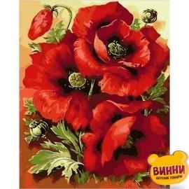 Купить картину по номерам Mariposa Великолепные маки, 40*50 см Q1633