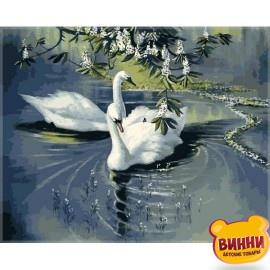 Купить картину по номерам Babylon Пара лебедей, 40*50 см VP233