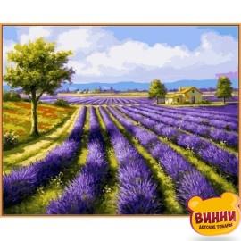 Купить картину по номерам Babylon Premium Лавандовые поля (в раме), 40*50 см, NB530