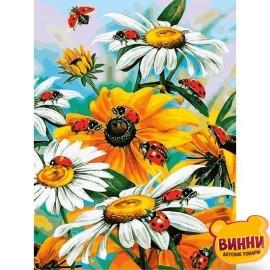 Купить картину по номерам Babylon Божьи коровки и ромашки, 30*40 см VK080
