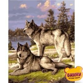Купить картину по номерам Babylon Волчья пара, 40*50 см VP1131