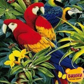 Купить картину по номерам Mariposa Красочные ара, попугаи 40*50 см Q2122