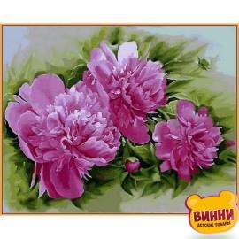 Купить картину по номерам Babylon Premium Розовые пионы (в раме), 40*50 см, NB2184