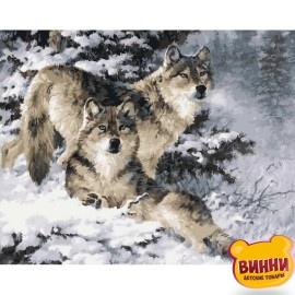 Купить картину по номерам Babylon Пара волков худ. Феннинг Ларри, 40*50 см VP344