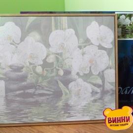 Купить картину по номерам Babylon Premium Оазис наслаждения (в раме), 40*50 см, NB534