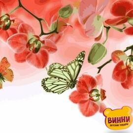 Купить картину по номерам Babylon Бабочки и красные орхидеи, 30*40 см VK013