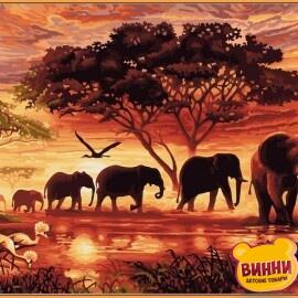 Купить картину по номерам Babylon Premium Саванна (в раме), 40*50 см, NB418