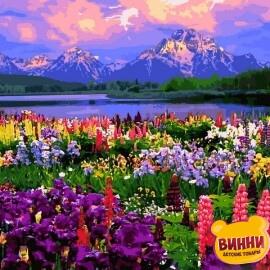 Купить картину по номерам Babylon Полевые цветы, 40*50 см VP1253. Купить размер 50*65 см VPS1253