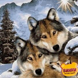 Купить картину по номерам Babylon Семья волков, 50*65 см VPS1023