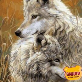 Купить картину по номерам Babylon Степные волки, 30*40 см VK034