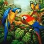 Купить картину по номерам Mariposa Попугаи ара, 40*50 см Q1078
