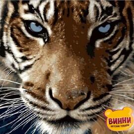 Купить картину по номерам Mariposa Взгляд тигра, 40*50 см Q2082