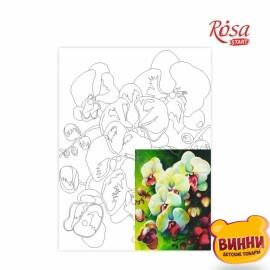 Холст с контуром Натюрморт №18 Орхидеи, 30*40 см в пленке, ROSA START