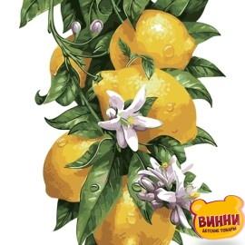 AS0315 Лимонное дерево
