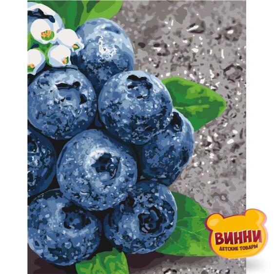 Купить картину по номерам Идейка Сочные плоды, 40*50 см KHO5581