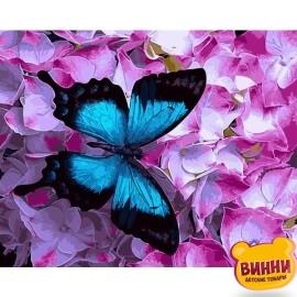 Купить картину по номерам Бабочка на цветах, 40*50 см, GX21627