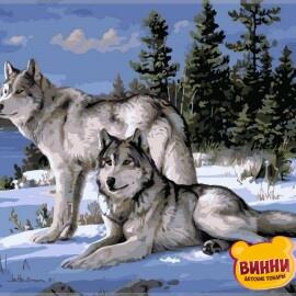 Купить картину по номерам Babylon Волки на снегу, 40*50 см VP236