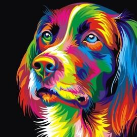 Купить картину по номерам Babylon Радужный пес, 30*40 см VK003