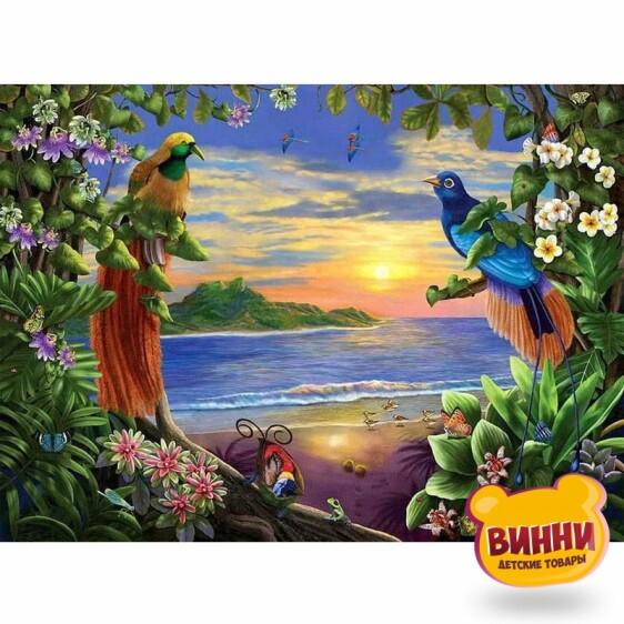 Купить картину по номерам Райские птицы, 40*50 см PH3030