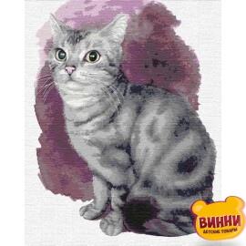Купить картину по номерам Идейка Маленький котенок, 40*50 см KHO4187