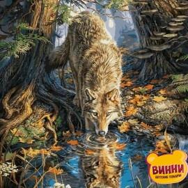 Купить картину по номерам Babylon Волк на водопое, 40*50 см VP930