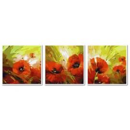 Купить триптих, модульную картину по номерам Babylon Солнечные маки, VPT009