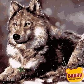 Купить картину по номерам Волк на снегу, 40*50 см, VA-0335