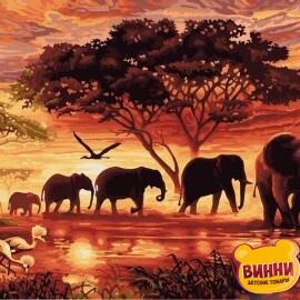 Купить картину по номерам Strateg Африка, 40*50 см, VA-2104