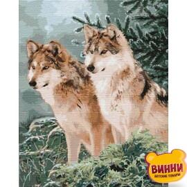 Купить картину по номерам Идейка Волчий взгляд, 40*50 см KHO4191