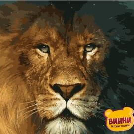 Купить картину по номерам Взгляд льва, 40*50 см, в коробке, VA-0899