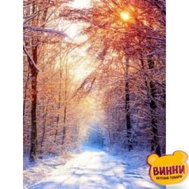Купить алмазную мозаику Зима 30*40 см, на подрамнике, в коробке, H8739