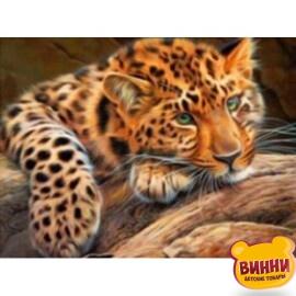 Купить алмазную мозаику Леопард, 30*40 см, без подрамника, в коробке, H8436