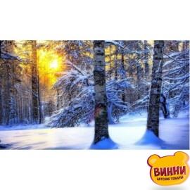 Купить алмазную мозаику Зимний лес 30*40 см, без рамки, в коробке, H8919