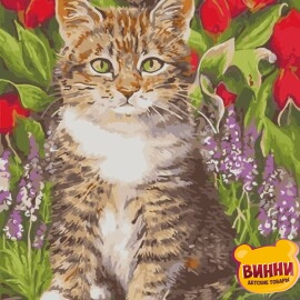 Купить картину по номерам ArtStory AS0927 Кот в цветах