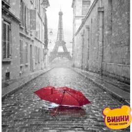 Купить алмазную мозаику Осенний Париж 30*40 см, на подрамнике, в коробке, H8063