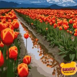 Купить картину по номерам Art Craft Поля тюльпанов в Голландии, 40*50 см 10524