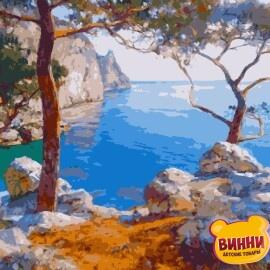 Купить картину по номерам Artissimo Скалы у моря, 40*50 см, PN7443