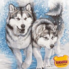 Купить картину по номерам ArtStory AS0956 Северные собаки