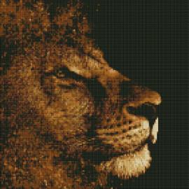 Купить алмазную мозаику ArtStory ASM9 Золотой лев