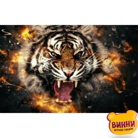 Купить алмазную мозаику Тигр, 30*40 см, без подрамника, в коробке, H8948