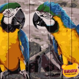 Купити розпис за номерами на дереві ArtStory Два папуги 30*40 см, ASW057