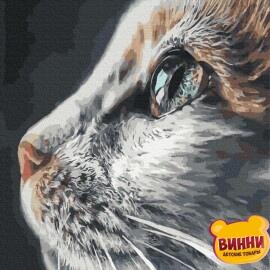 Купити картину за номерами RainbowArt Погляд кішки, 40*50 см, GX37082